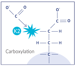 Carboxylation